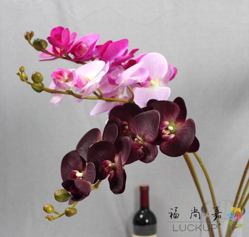 1 Stem Real Touch Latex Künstliche Motte Orchidee Schmetterling Orchidee Blume Für Neues Haus Hochzeit Festival Dekoration F472 Ein Kunststoffkoffer Ist FüR Die Sichere Lagerung Kompartimentiert Künstliche Und Getrocknete Blumen