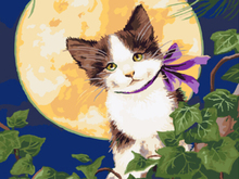 "DIY Painting By Number – Kitty with the moon (16""x20"" / 40x50cm)"