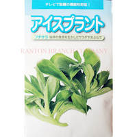 New 1 original Package 100pcs Japan common ice plant Seeds, green Crystalline ice vegetable seeds, quality vegetable seeds