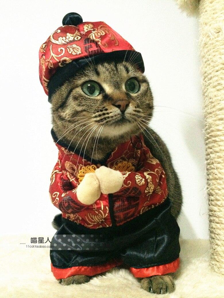 Fantaisie Livraison Gratuite Si Drole Style Chinois Happy New Year Animal Chat Chenil Chien Robe Costume Vetements Chapeau Aliexpress