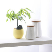 Mini Colourful Round Plastic Plant Flower Pots Home Office Decor Planter(China)