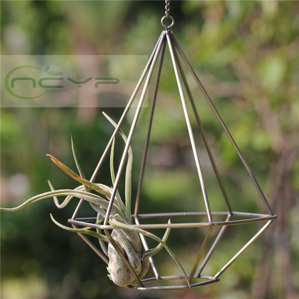 Buy rustic style hollow freestanding for Geometric air plant holder