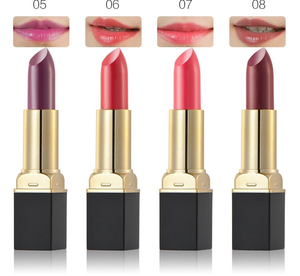 HuaMianLi Brand Lipstick Matte Waterproof 12 Gloss Long Lasting Lip Gloss Lip Liner Lipgloss
