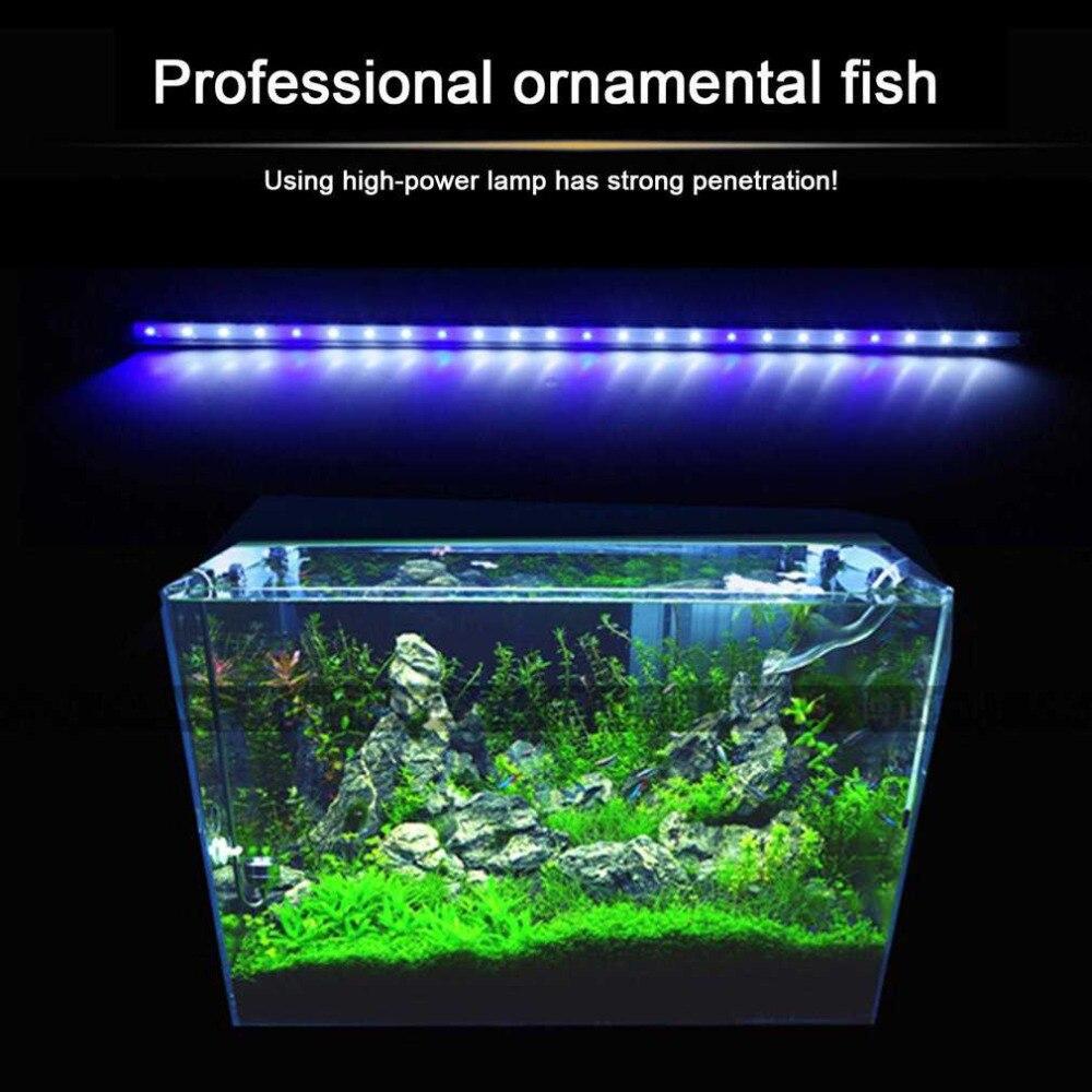 2 couleurs Aquarium Aquarium lumière LED amphibie utilisation blanc bleu/rouge bleu vert lumière couleur Submersible étanche pince lampe
