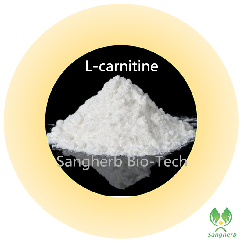 200 grams free shipping Pure natural Weight lose ingredients L carnitine powder l carnitine powder