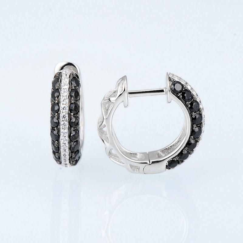 E306865BSNZSK925-SV2-Silver Earrings