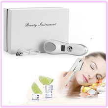 Free Shipping Portable Electric USB Rechargeable Anti Aging Sonic Vibration Facial Beauty Massager Skin Rejuvenation