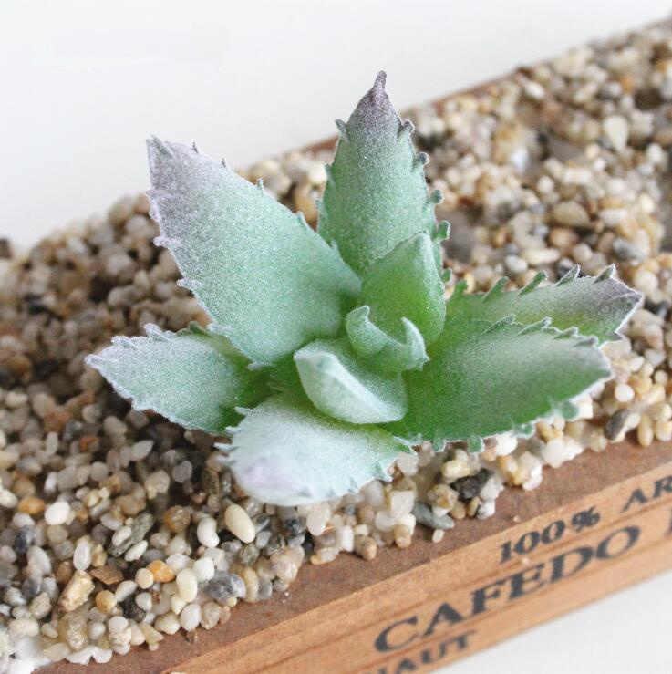 Novo Mini Artificial Plantas Suculentas Lótus Paisagem Grama falsificada Decorativa Planta de plástico de mesa Em Casa Do Jardim Decoração DIY cactus