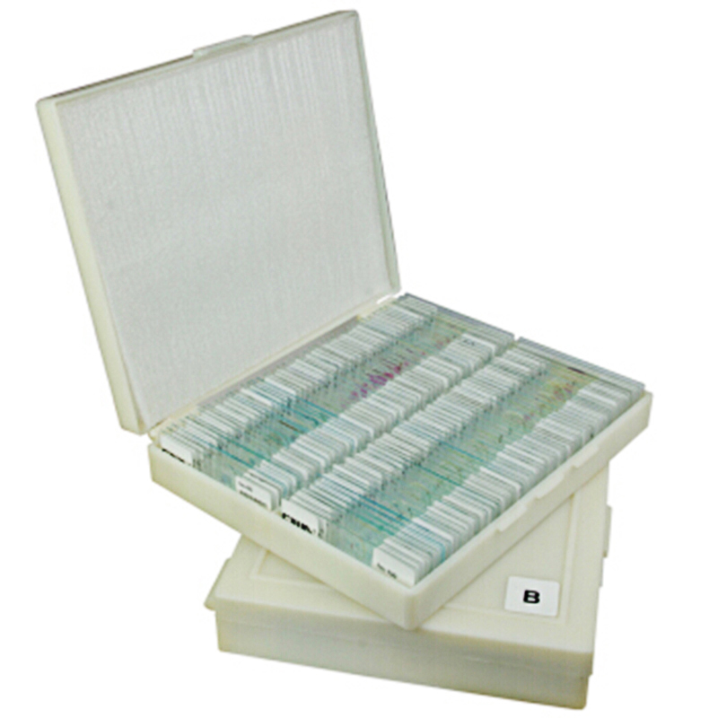 CIWA HD Microscope Biologique Spécimen 100 Tranches Usine échantillons d'animaux Tranche pour Les Étudiants science cellule Végétale expérience tranches