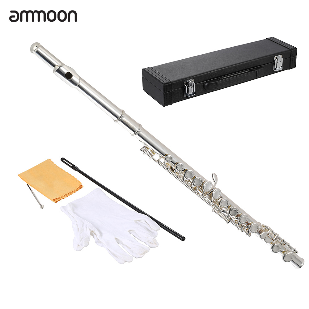 Ammoon High Quality Flute Cupronickel Silver Plated 16 Closed Holes C Key With Case Screwdriver Wind Instruments For Student