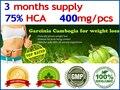 300 Caps para 3 meses de abastecimento! (75% HCA) Garcinia cambogia Emagrecimento Garcinia cambogia suplemento da dieta da perda de peso Queimar Gordura