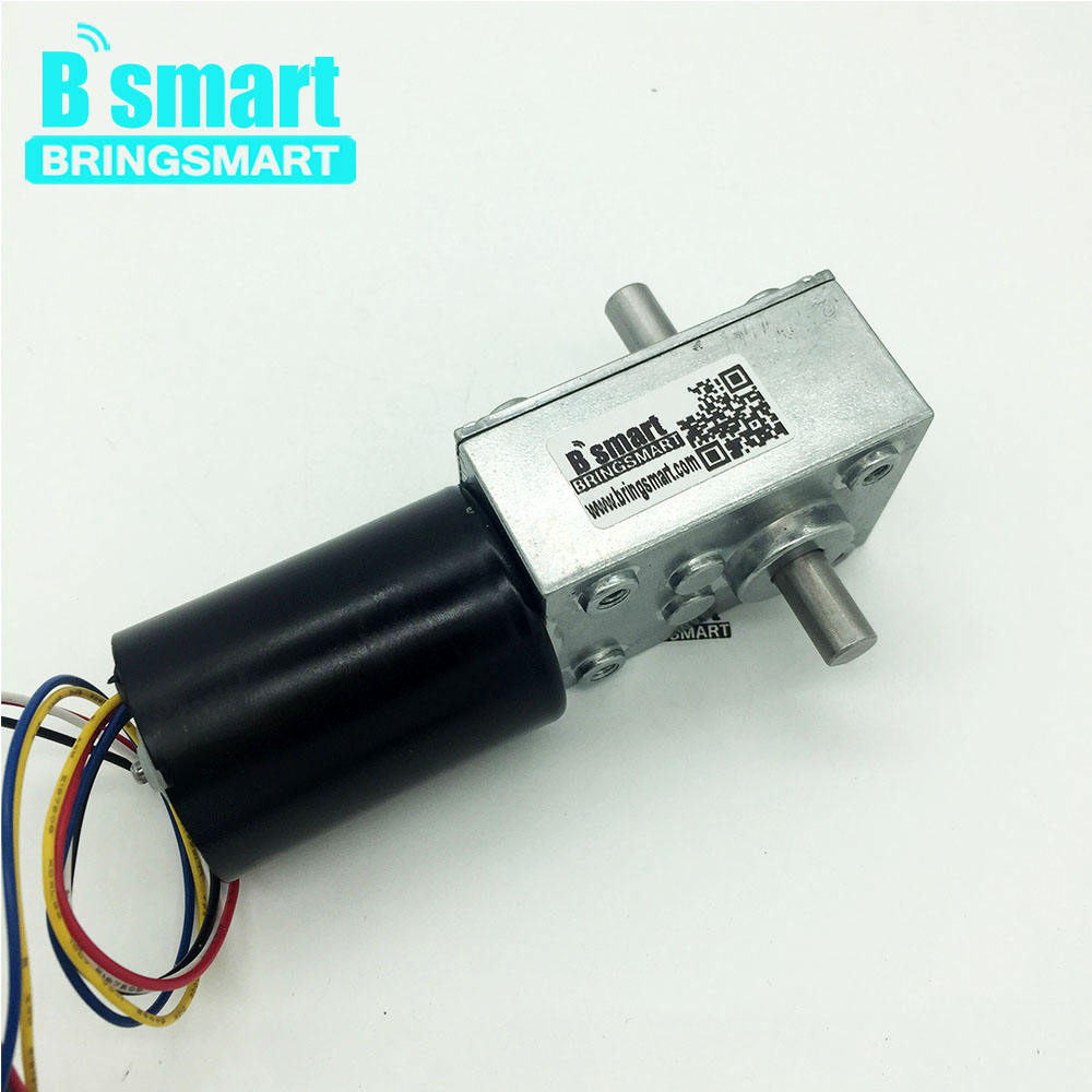 Bringsmart 5840-3650 12v Double Shaft BLDC Worm Gear Motor Self-locking Gearbox Brake Motor High Torque Mini Turbo-Worm Reducer bringsmart worm gear motor 12v dc stepper motors reducer self locking mini gearbox 24 volt micro electric tool a58sw 42by