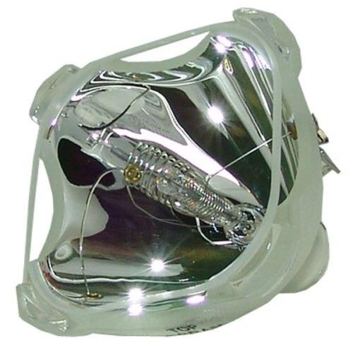 Compatible Bare Bulb LMP-P202 LMPP202 for SONY VPL-PS10 VPL-PX10 VPL-PX11 VPL-PX15 Projector Lamp Bulb without housing factory price compatible replacement projector lamp with housing lmp p202 for sony vpl ps10 vpl px10 vpl px11 vpl px15