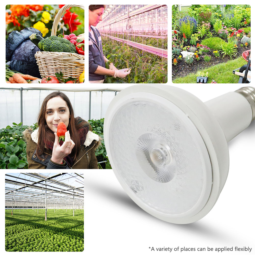 1PCS Full Spectrum COB LED Grow Light CREE CXA1512 20W Growing Lamp Indoor Plant Growth Panel Lighting Plant Veg And Bloom