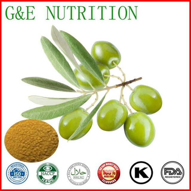 low price high quality Olive Leaf Extract 100g