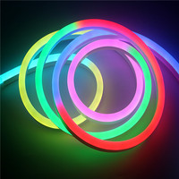 WiFi Remote Control Addressable Pixel LED Neon WS2811 DC12V Multicolor Combination Outdoor Frame Super Beautiful Night Light