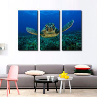 3 Picture Combination Wall Art Painting Turtle Looking Swim In The Sea Prints On Canvas The