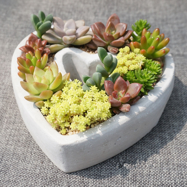 indoor herb garden planters. Heart Shaped Indoor Herb Garden Pots Ceramic Terracotta Planters For Succulents Supplies Flowers Pot O
