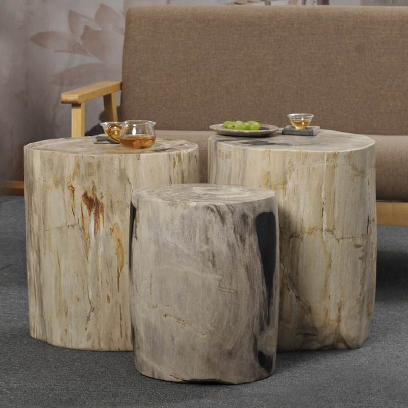 Superb Polished Natural Petrified Wood Fossil End Table Stool Side Inzonedesignstudio Interior Chair Design Inzonedesignstudiocom