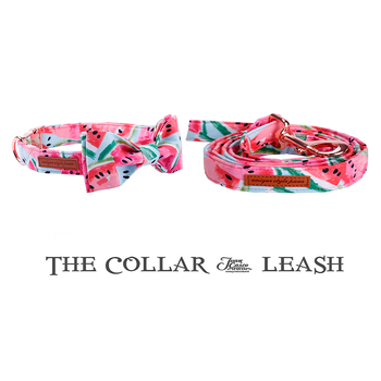 Pink Watermelon Collar and Leash Set with Bow Tie