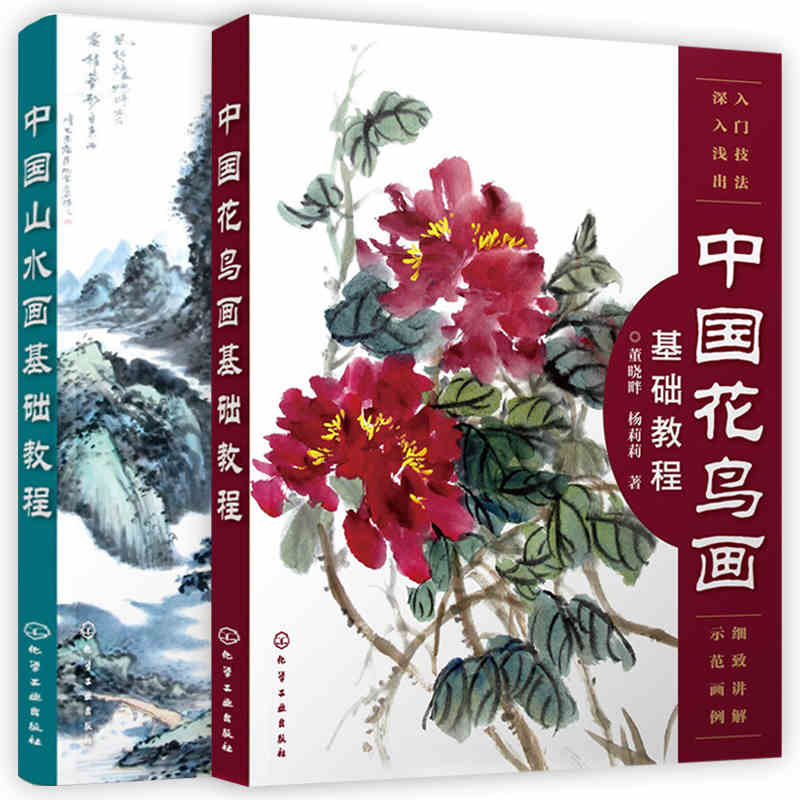 Chinese traditional brush book landscape bird ink painting basic knowledge textbook for beginners with detail steps,set of 2 цена