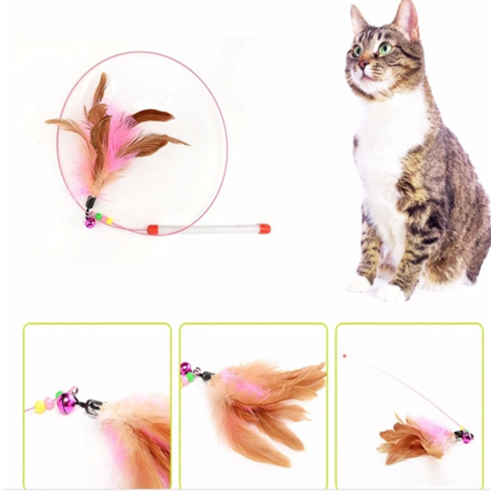 Tolle 9 Draht Katze Fotos - Der Schaltplan - triangre.info