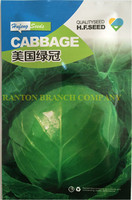 New original Package 10G America cabbage Seeds, heat and moisture-resisting cabbage seeds, middle mature quality vegetable seeds
