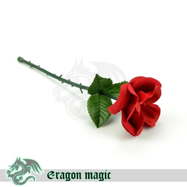 tour de magie rose