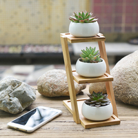 Small Round White Ceramic Succulent Plant Pot Cactus Planter for Succulent Plants with Bamboo Tray for Room Decoration