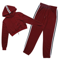 Women's Tracksuits 2 Piece Set Pink Crop Top And Pants Fashion 2018 Autumn Casual Lady Tumblr Long Sleeve Hoodies Pants Suit 4