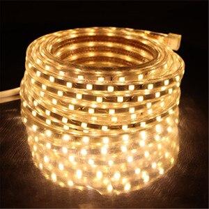 Image 3 - SMD 5050 AC220V LED Strip Flexible Light 60leds/m Waterproof Led Tape LED Light With Power Plug 1M/2M/3M/5M/6M/8M/9M/10M/15M/20M