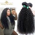 Бразильский Kinky Вьющиеся Волосы Девственницы 2 шт. Лот короля Вьющиеся Волосы Завода Девы Волос 7А Необработанные Человеческих Волос Weave Связки
