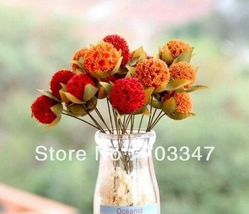 Новое поступление!(72 шт./лот) Красивая 2,5 см один сушеный цветок стебель DIY ремесло