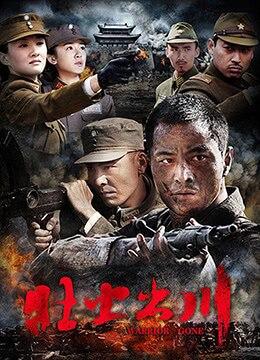《铁血征途》2013年中国大陆剧情,战争电视剧在线观看