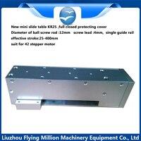 Точный сползая таблицы модуль линейный прокатки руководство с 42 шагового двигателя 1204 винта 300 мм