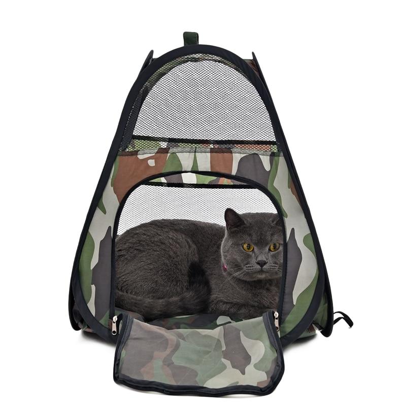 ашэйники для котят святьащийсьа купить