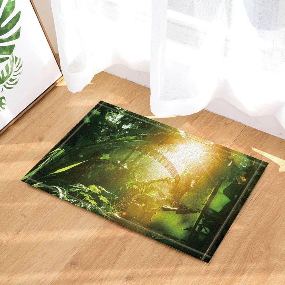 Tropical Rainforest Decor, Sunshine into Banana Leaves Jungle Bath Rugs, Non-Slip Doormat Floor Entryways Indoor