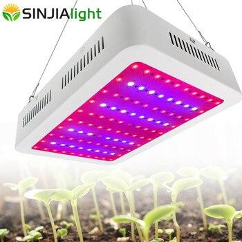 1000 W Volledige Spectrum LED Grow Light Dubbele Chip Groeiende Panel Plant Lamp voor hydrocultuur vegs kruid kas tent indoor planten