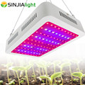 Lámpara de crecimiento de planta de Panel de doble Chips de luz LED de espectro completo de 1000 W para plantas de invernadero de flores hidropónicas