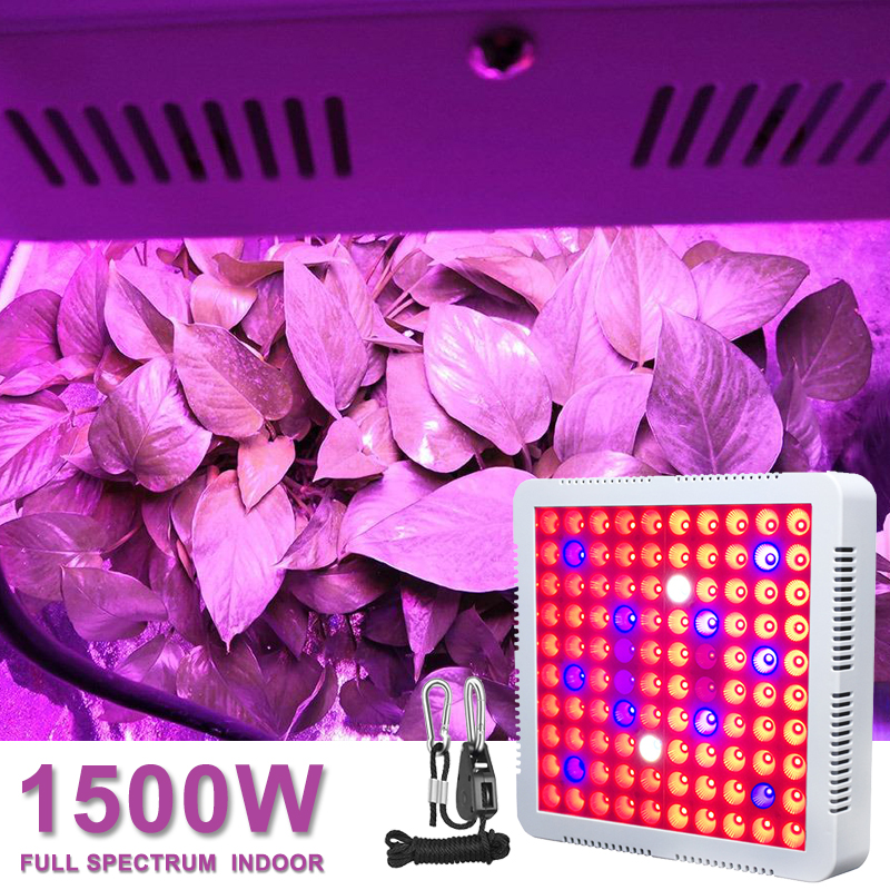 2000W Timer Full Spectrum Led Grow Lamp Light For Indoor Plant 100 LED Garden Tent Flower Seed Growing Lamp Fitolampy Fito Phyto