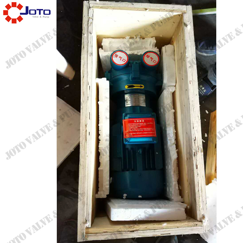 Manufacturer 2BV2060 Cast Iron Water Ring Vacuum Pump with stainless steel impeller