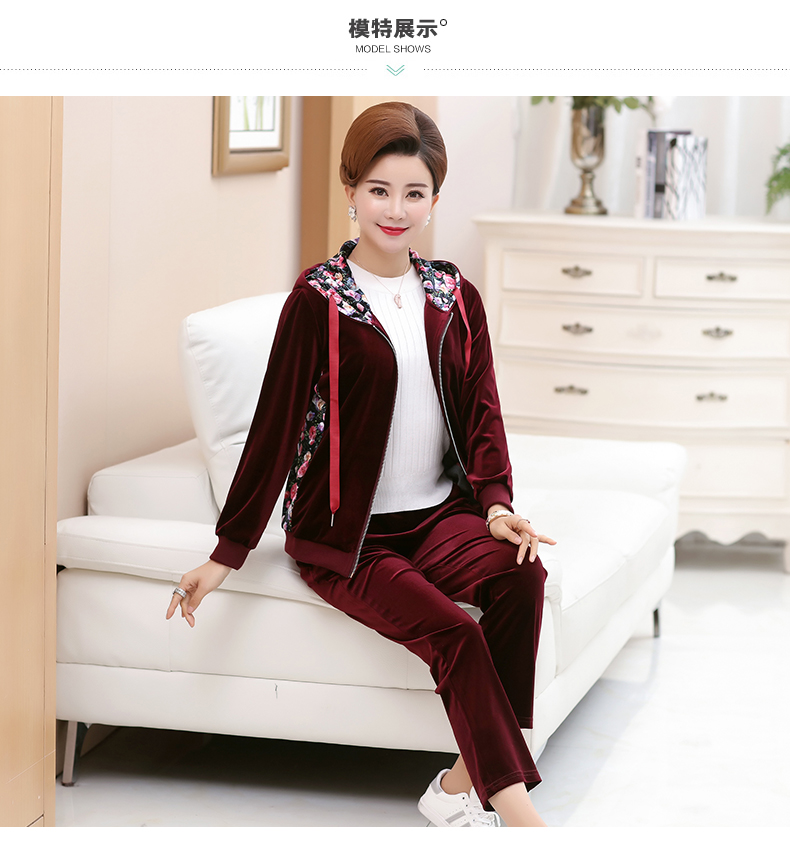 WAEOLSA Woman Casual Tracksuit Women Hooded Jacket And Trouser 2 Pieces Suit Pleuche Set Lady 2PCS Pant Set Velvet Ensemble Femme (5)