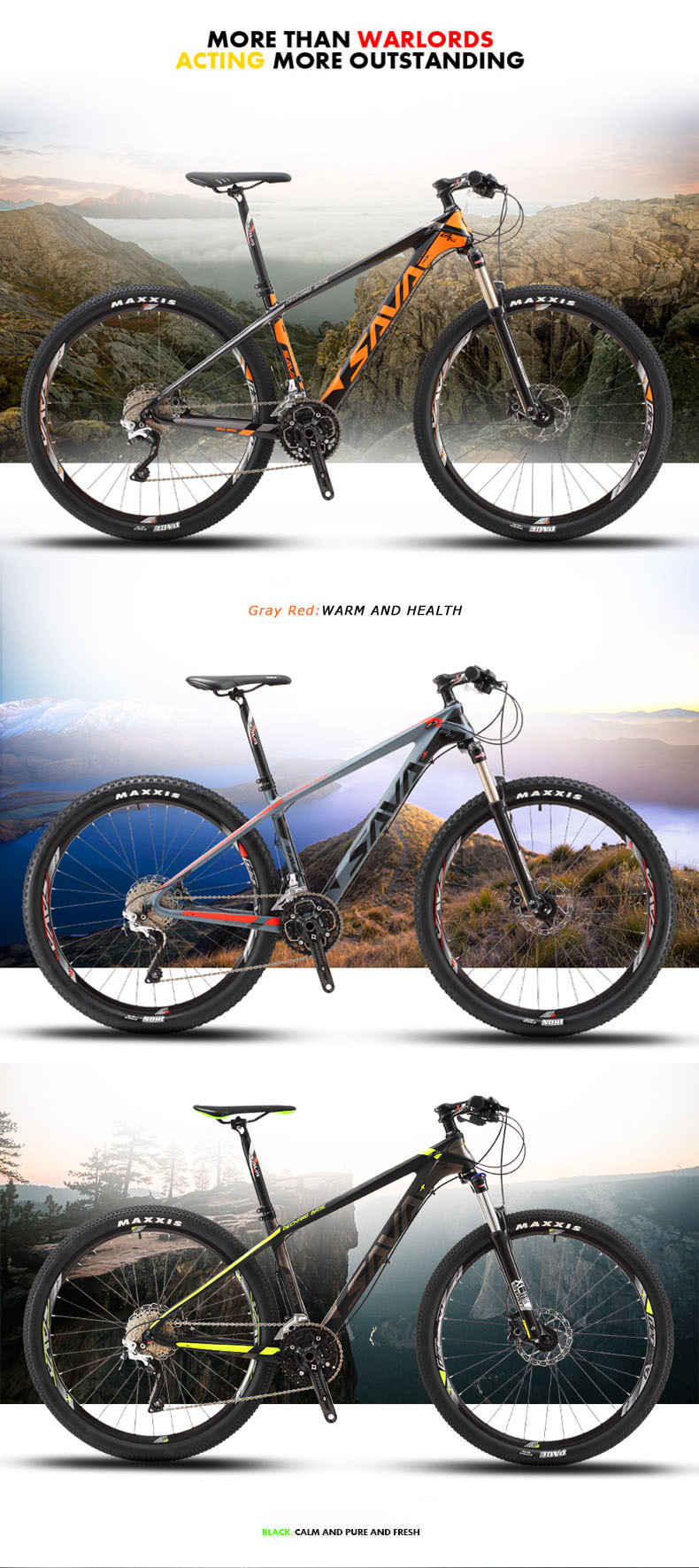 Mountain Bike 300 -2