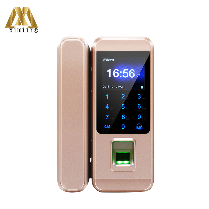 Free Shipping Fingerprint Glass Door Lock With Card And Password Door Lock XM-300A Smart Glass Door Lock Framless