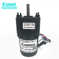 Bringsmart 220V AC Gear Motor 6W Constant Speed Single Phase Induction Motor Micro Motor