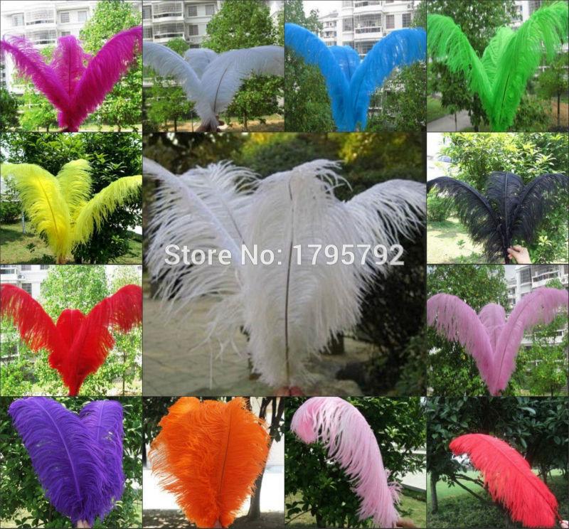 Ev ve Bahçe'ten Tüy'de Renk seçin! 100 adet 30 35 cm Doğal Kıkırdak Tüyleri Craft Elbise Yapımı Toplu Satış Satan Üreticiler Devekuşu Tüyü'da  Grup 1