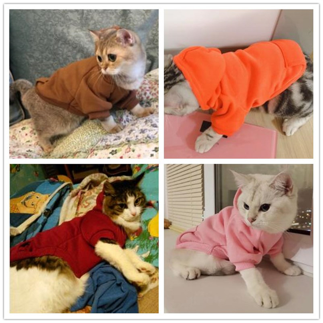 Basic hoodie for pets