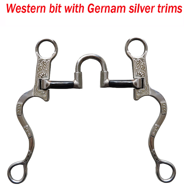 127mm High-quality Western Spurs Equestrian Horse Bits Stainless Steel Surface Inlaid With Carved Silver Riding Crop S