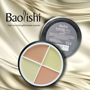 baolishi Waterproof Matte Bronzer highlighter Brightening Concealer Powder glow kit Markers for Face Palette best brand makeup