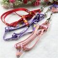 Reflective Floral Dog Pet traction rope+Dog Harness Set Chest Back Strap
